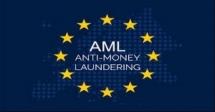 Training Course on Anti-Money Laundering Strategies