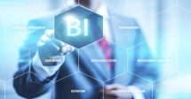 Business Intelligence and Analysis for HR Professionals Course