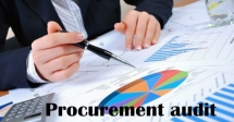 Procurement Audit Course