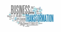 Managing Corporate Transformations Course