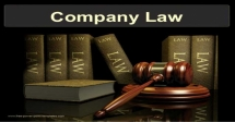 Company Law –Essential Overview Course