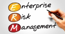 Auditing the Enterprise Risk Management Process