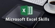 Excel Skills for HR and Admin Professionals