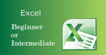 Intermediate Excel for Financial and Business Analysis
