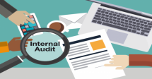Essentials of Internal Audit Course