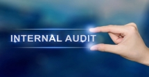 Internal Auditing Strategies in the Oil and Gas Sector