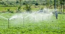 Training on Irrigation and Operational Maintenance