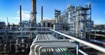 Petroleum Company Performance Management Training
