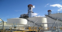 Petroleum Company Performance Management